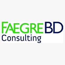 FagreBD Consulting
